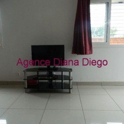 Location-villa-meublée.www_.diego-suarez-immobilier.com08-500x375-250x250.jpg