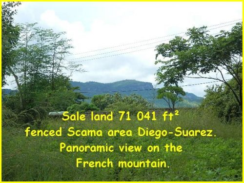 Sale-land-71-041-ft²-fenced-Scama-area-Diego-Suarez-500x375.jpg