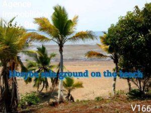 Sale-land-beach-nosybe-real-estate-madagascar-1-500x375.jpg