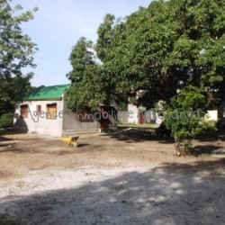 Vente-propriete-Amborovi-Mahajanga.02-500x373-250x250.jpg