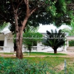 Villa-location-mahajanga-www.mahajanga-immobilier.com7_-500x332-250x250.jpg
