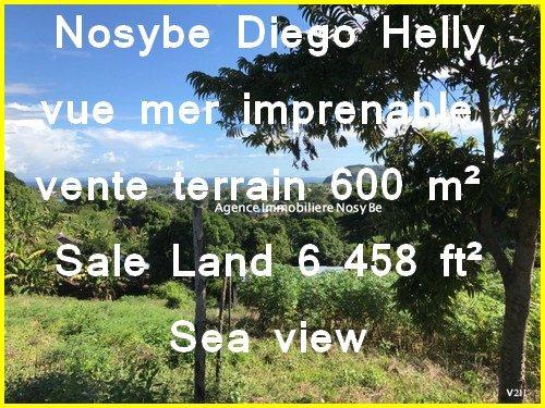 diego-helly-nosybe-500x375.jpg