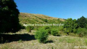 immobilier-diego-suarez-nosybe.com04-500x281.jpg