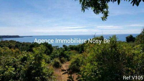real-estate-madagascar.com02-500x281.jpg
