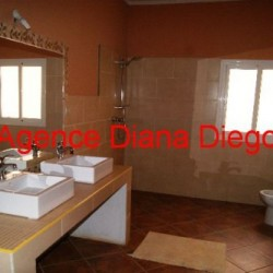 real-estate-madagascar02-11-250x250.jpg