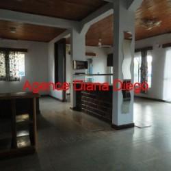 real-estate-madagascar03-14-250x250.jpg
