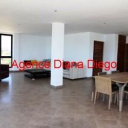 real-estate-madagascar03-250x250.jpeg