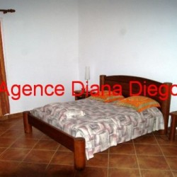 real-estate-madagascar04-10-250x250.jpg