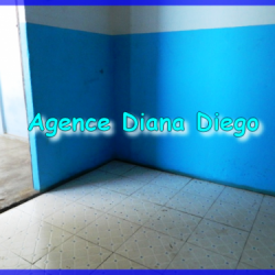 real-estate-madagascar05-250x250.png