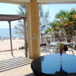 real-estate-madagascar1-6-250x250.jpg