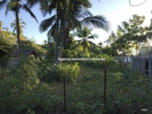 sale-land-1531-or-16479-beach-ankibanivato-50-m-2-500x375.jpg
