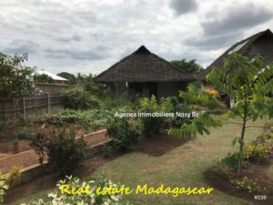 sale-villa-860-ft²-land-area-3229-ft²-ampasindava-nosybe-3-500x375.jpg
