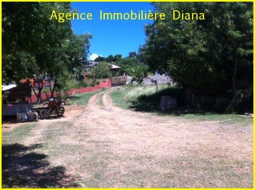 www.immobilier-diego-suarez.com1_-500x373.jpg