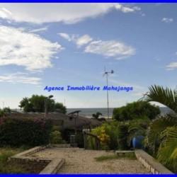 www.mahajanga-immobilier.com1_-1-500x332-250x250.jpg