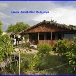 www.mahajanga-immobilier.com3_-1-500x332-250x250.jpg