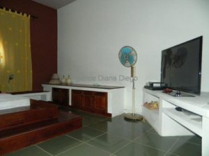 www.real-estate-madagascar.com0114-500x375.jpg