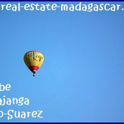 www.real-estate-madagascar.com018-250x250.jpg