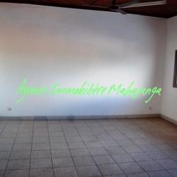 www.real-estate-madagascar.com09-1-250x250.jpg