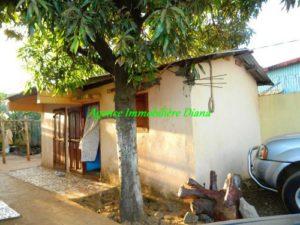 www.real-estate-madagascar.com21-500x375.jpg