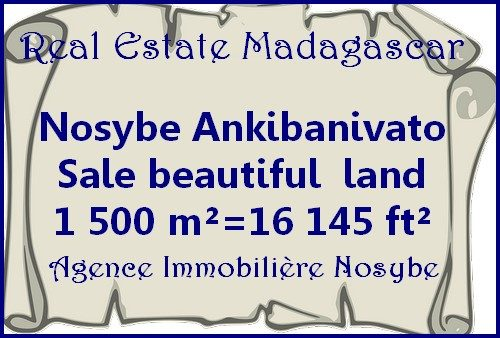 www.real-estate-madagascar.com_-1-500x338.jpg