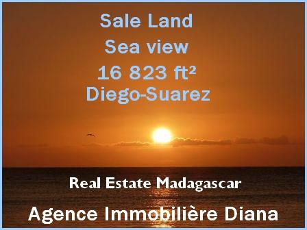 www.real-estate-madagascar.com_-1.jpg