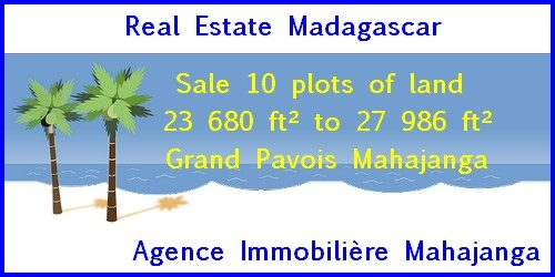 www.real-estate-madagascar.com_-3-500x250.jpg