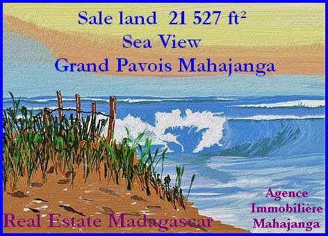 www.real-estate-madagascar.com_-5.jpg