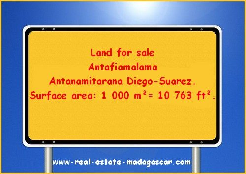 www.real-estate-madagascar.com_-500x353.jpg