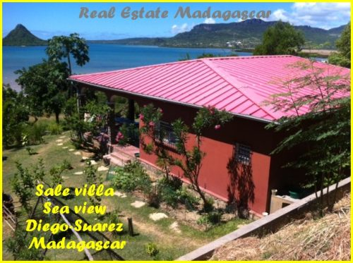 www.real-estate-madagascar.com_-500x373.jpg
