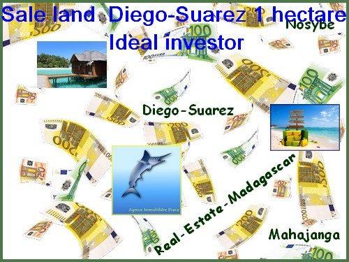 www.real-estate-madagascar.com_-500x375.jpg