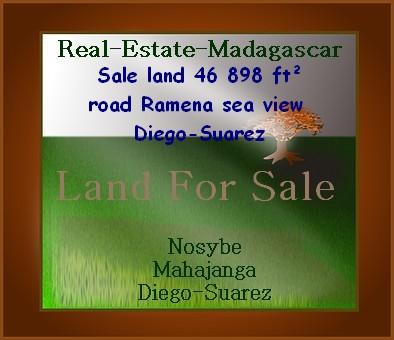 www.real-estate-madagascar.com_.jpg