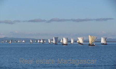 www.real-estate-madagascar.com4_.jpg