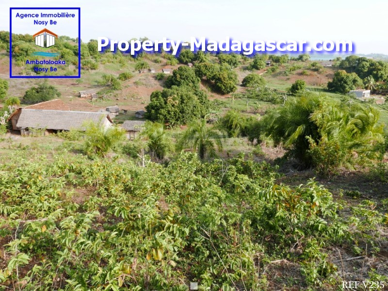 land-for-sale-antaolankena-nosybe-madagascar-3.jpg