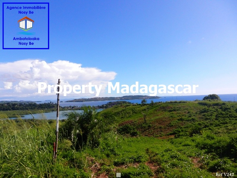 special-investor-sale-land-nosybe-2.JPG