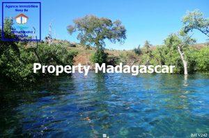 special-investor-sale-land-nosybe-4.jpg