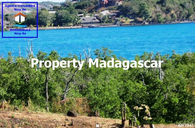 special-investor-sale-land-nosybe-5.jpg