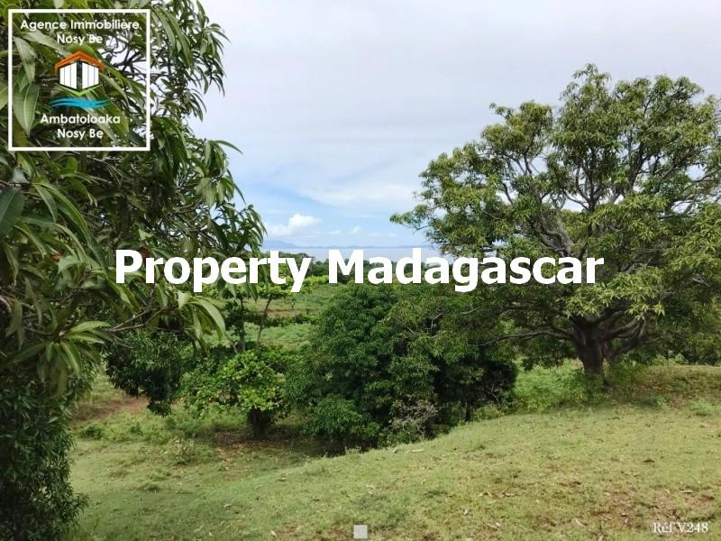 land-for-sale-dzamanzar-nosybe-3.jpg