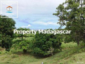 land-for-sale-dzamanzar-nosybe-5.jpg