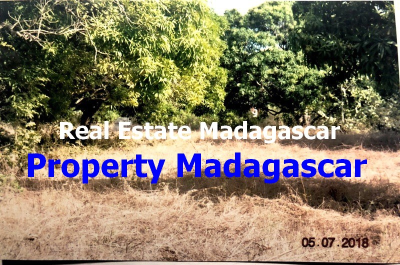 mahajanga-amborovy-land-sale-1.JPG
