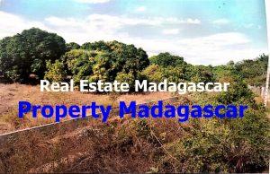 mahajanga-amborovy-land-sale-3.JPG