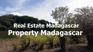 land-for-sale-21-ha-cap-diego-2.jpg