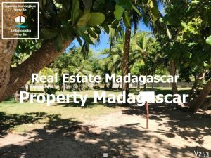 sale-land-andilana-nosybe-3.jpg