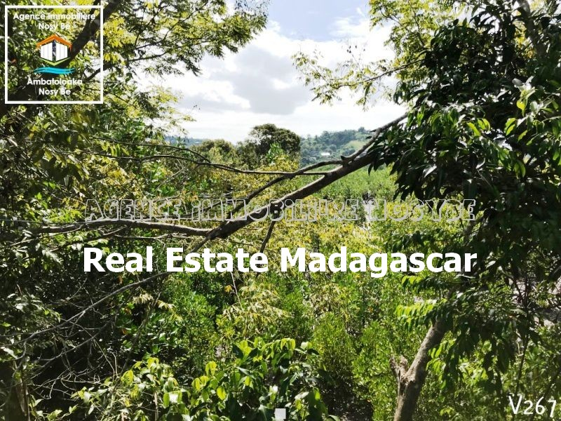 Property For Sale On Madegascar