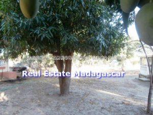 mahajanga-rent-new-villa-5.jpg