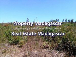 land-for-sale-mahajanga-ampazony-2.jpg