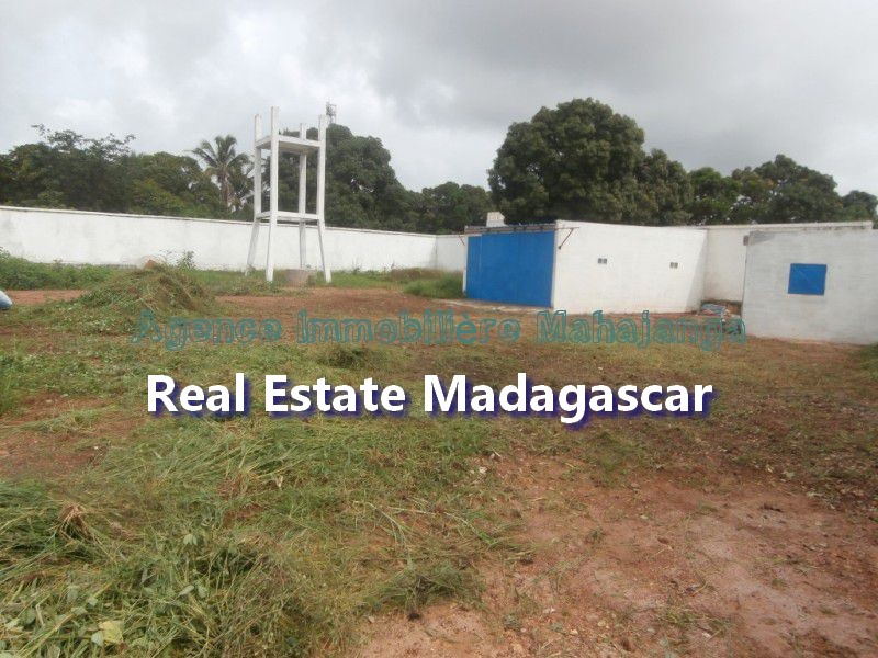 mahajanga-amborovy-land-sale-mada-3.jpg