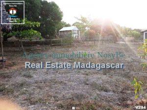 nosybe-ambondrona-land-sale-3.jpeg