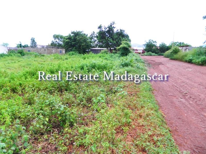sale-land-district-scama-diego-2.JPG