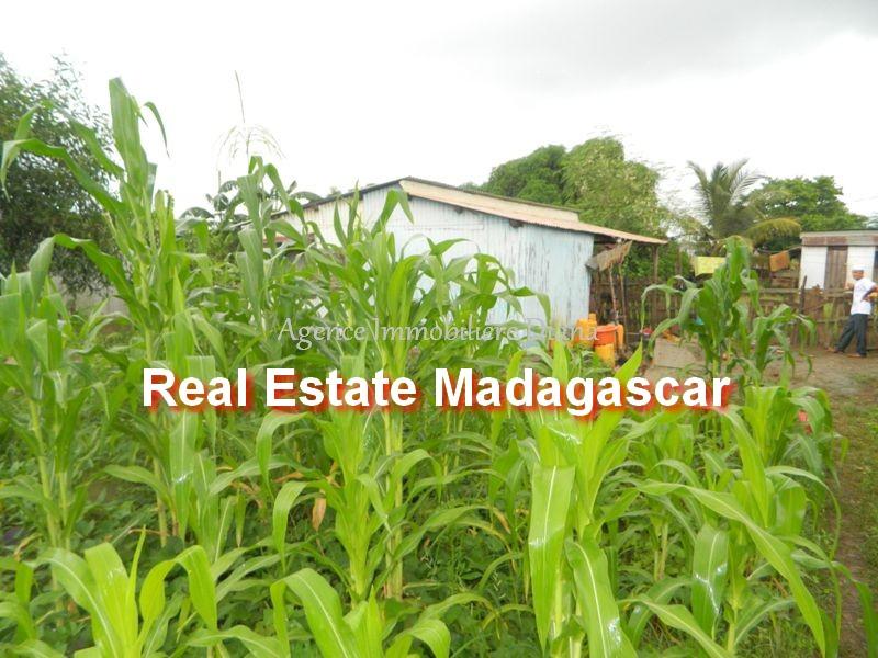 scama-diego-suarez-land-sale-1.jpg