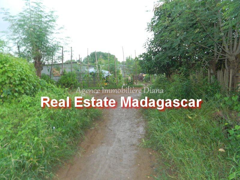 scama-diego-suarez-land-sale-2.jpg